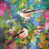 Simon, REALISTIC ANIMALS, REALISTISCHE TIERE, ANIMALES REALISTICOS, innovativ, paintings+++++SueGardner_LongTailedBird,GBWR366,#a#, EVERYDAY