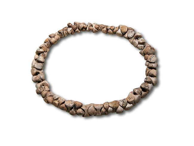 Bone necklace. Catalhoyuk Collections. Museum of Anatolian Civilisations, Ankara. Against a white background