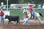 A competitor chases after a calf in the Woman's Steer Stopping event at the Minden Ranch Rodeo Buckaroo Fest during the NV150 Fair at Fuji Park in Carson City, Nev., on Sinday, August 3, 2014.<br /> (Photo By Kevin Clifford)