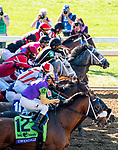 November 7, 2020 : Horses break out of the starting gate during the Big Ass Fans Dirt Mile on Breeders' Cup Championship Saturday at Keeneland Race Course in Lexington, Kentucky on November 7, 2020. Scott Serio/Eclipse Sportswire/Breeders' Cup/CSM