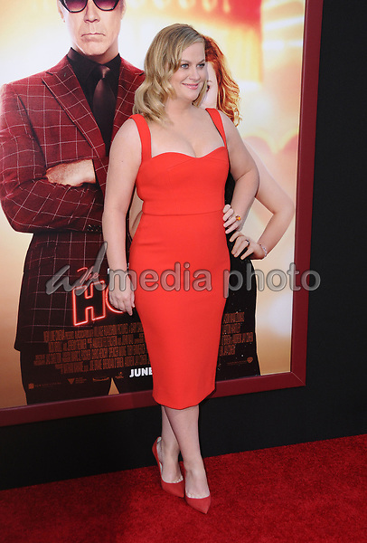 """26 June 2017 - Hollywood, California - Amy Poehler. """"The House"""" Los Angeles Premiere held at the TCL Chinese Theatre in Hollywood. Photo Credit: Birdie Thompson/AdMedia"""
