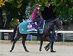 November 1, 2018 : Soldier's Call, trained by Archie Watson, trains for the Breeders' Cup Juvenile Turf Sprint at Churchill Downs on November 1, 2018 in Louisville, KY. Jessica Morgan/ESW/CSM