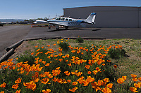 Jake Hoberg prepares to taxi Beechcraft Bonanza N3068W aircraft at Lampson Field (1O2) Lakeport, Lake County, California; California poppy blooming in the foreground