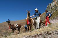 Aventure au Pérou : Vallee Sacrée : Mirador de Moray (3500 m), Huchuy Qosqo (3400 m), Moray (3500 m), Salines de Maras (3000 m). Cusco (3400 m).