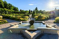 France, Indre-et-Loire (37), Villandry, Jardins du château de Villandry en août, le Jardin du Soleil, fontaine en étoile au centre de la chambre du soleil