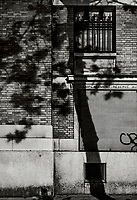 Paris, Tree Shadow, Baumschatten, Baum, Blaetter [werfen] Schatten an die Hauswand, 29.11.2013<br /> <br /> <br /> <br /> ***HIGHRES AUF ANFRAGE*** ***VOE NUR NACH RUECKSPRACHE***<br />  ***Keine Social_Media Nutzung***<br /> <br /> Engl.: Europe, France, Paris, Tree Shadow, shadows, trees, tree, leaves, house wall, facade, 29 November 2013<br /> ***HIGHRES ON REQUEST***PUBLICATION ONLY AFTER CONSULTATION WITH LAIF***<br /> ***No social media use***