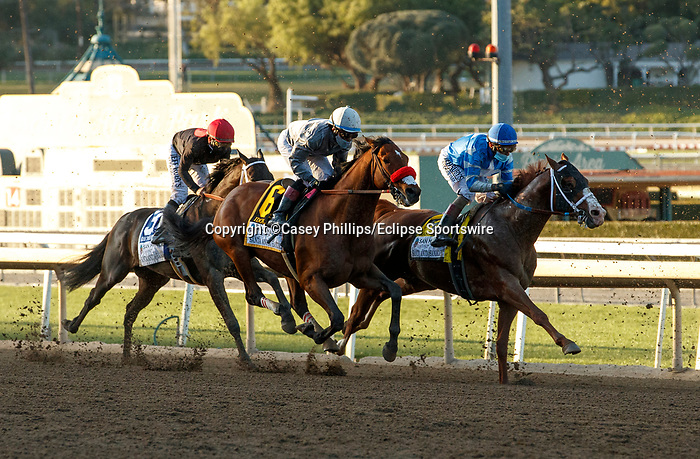 ARCADIA, CA  MARCH 6: #6 Idol, ridden by Joel Rosario, in the stretch of the Santa Anita Handicap (Grade l) on March 6, 2021 at Santa Anita Park in Arcadia, CA.   (Photo by Casey Phillips/EclipseSportswire/CSM)
