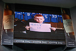 Rangers community advert on the screens at half-time