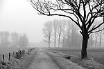Europa, DEU, Deutschland, Nordrhein Westfalen, NRW, Rheinland, Niederrhein, Wachtendonk, Landschaft, Dunst, Morgenstimmung, Weg, Feldweg, , Kategorien und Themen, Natur, Umwelt, Landschaft, Landschaftsfotos, Landschaftsfotografie, Landschaftsfoto, Wetter, Wetterelemente, Wetterlage, Wetterkunde, Witterung, Witterungsbedingungen, Wettererscheinungen, Meteorologie, Wettervorhersage<br /> <br /> <br /> [Fuer die Nutzung gelten die jeweils gueltigen Allgemeinen Liefer-und Geschaeftsbedingungen. Nutzung nur gegen Verwendungsmeldung und Nachweis. Download der AGB unter http://www.image-box.com oder werden auf Anfrage zugesendet. Freigabe ist vorher erforderlich. Jede Nutzung des Fotos ist honorarpflichtig gemaess derzeit gueltiger MFM Liste - Kontakt, Uwe Schmid-Fotografie, Duisburg, Tel. (+49).2065.677997, archiv@image-box.com, www.image-box.com]
