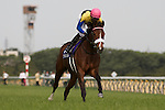 Last year's Filly Triple Crown winner Apapane defeats Horse of the Year Buena Vista in the Victoria Mile at Tokyo Racecourse on May 15, 2011