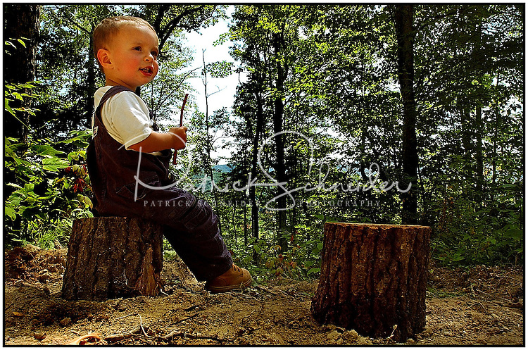 A toddler sits on a stump in the woods.  Model released image can be used to illustrate many purposes.