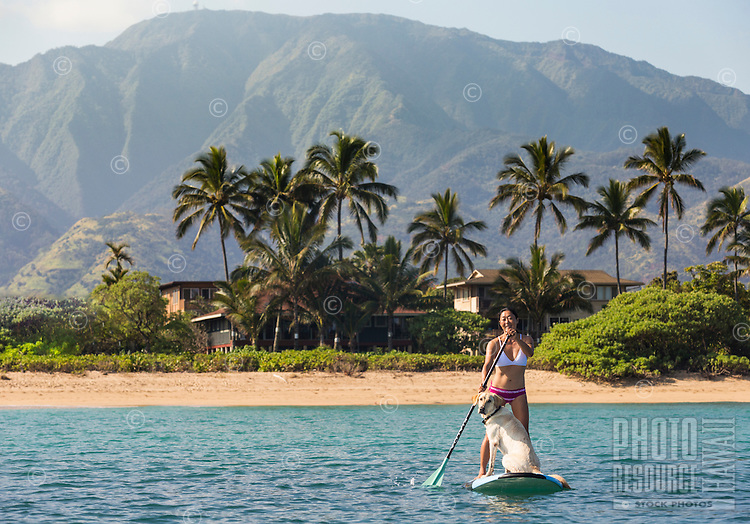 A woman and her dog standup paddle on the North Shore of O'ahu; Mt. Ka'ala provides a misty backdrop.