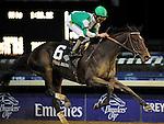 Royal Delta ridden by Jose Lezcano and trained by William I. Mott win the Breeders' Cup Ladies Classic at Churchill Downs on november 4, 2011.
