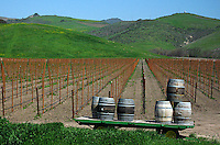 Fine art landscape of wine barrels stacked on a green, flat cart, in front of a new vineyard with lines of grapevine stakes leading into the center of the image, stopping at rich, green hills adorned with a touch of mustard on the left hilltop, near Santa Ynez Valley, central California Coast, U.S.A.
