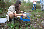 Becca Settele Removing Turtle Nest Cover