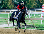 October 1, 2020: Liveyourbeastlife exercises as horses prepare for the Preakness Stakes Week races at Pimlico Race Course in Baltimore, Maryland. Scott Serio/Eclipse Sportswire/CSM