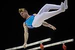 British Gymnastics Championships MAG Senior