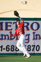 Palm Beach Cardinals left fielder Thomas Spitz (43) catches a fly ball during a game against the Jupiter Hammerheads  on August 12, 2016 at Roger Dean Stadium in Jupiter, Florida.  Jupiter defeated Palm Beach 9-0.  (Mike Janes/Four Seam Images)