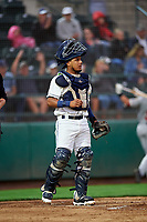 Tri-City Dust Devils catcher Alison Quintero (31) during a Northwest League game against the Vancouver Canadians at Gesa Stadium on August 21, 2019 in Pasco, Washington. Vancouver defeated Tri-City 1-0. (Zachary Lucy/Four Seam Images)