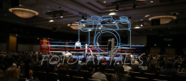 National Collegiate Boxing Association action in Reno, Nev. on Friday, Jan. 31, 2020. <br /> Photo by Cathleen Allison