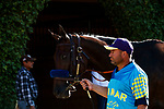 DEL MAR, CA  AUGUST 1: #3 As Time Goes By in the paddock before the Clement L. Hirsch Stakes (Grade 1) Breeders Cup Win and You're In Distaff Division on August 1, 2021 at Del Mar Thoroughbred Club in Del Mar, CA.