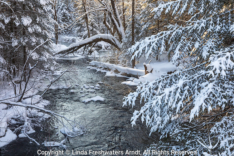 A pretty winter creek in northern Wisconsin.