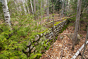 Remnants of the Number 2 Dam on the East Branch of the Pemigewasset River in Lincoln, New Hampshire. Built in the early 1900s, this dam was located east of Loon Mountain on the East Branch. And historical references refer to this dam by different names, but the No. 2 Dam seems to be the name most used.