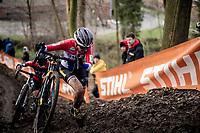 Lucinda Brand (NED/Telenet-Baloise Lions)<br /> <br /> 82nd Druivencross Overijse 2019 (BEL)<br />  <br /> ©kramon