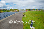 A very quiet Tralee Bay Wetlands on Sunday