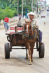 Man With Horse & Cart