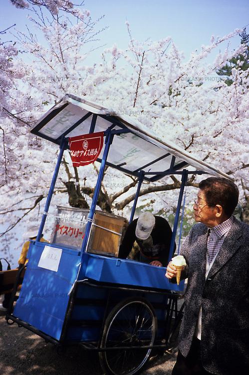 A Japanese businessman eats softcream, ice cream, during the cherry blossom festival in Hirosaki Castle, Aomori.<br /> <br /> Un homme d'affaires japonais mange de la crème glacée, crème glacée, lors du festival des fleurs de cerisier au château de Hirosaki, à Aomori.