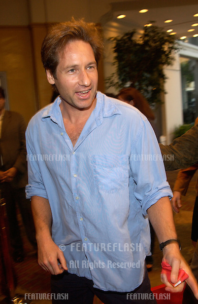 Actor DAVID DUCHOVNY at the Los Angeles premiere of Reign of Fire..© Paul Smith / Featureflash