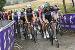 Marcus Burghardt (GER) Bora-Hansgrohe leads the way on Oude Kwaremont  during the Tour of Flanders 2020 running 244km from Antwerp to Oudenaarde, Belgium. 18th October 2020.  <br /> Picture: Bora-Hansgrohe/Nico Vereecken/PN/BettiniPhoto   Cyclefile<br /> <br /> All photos usage must carry mandatory copyright credit (© Cyclefile   Bora-Hansgrohe/Nico Vereecken/PN/BettiniPhoto)