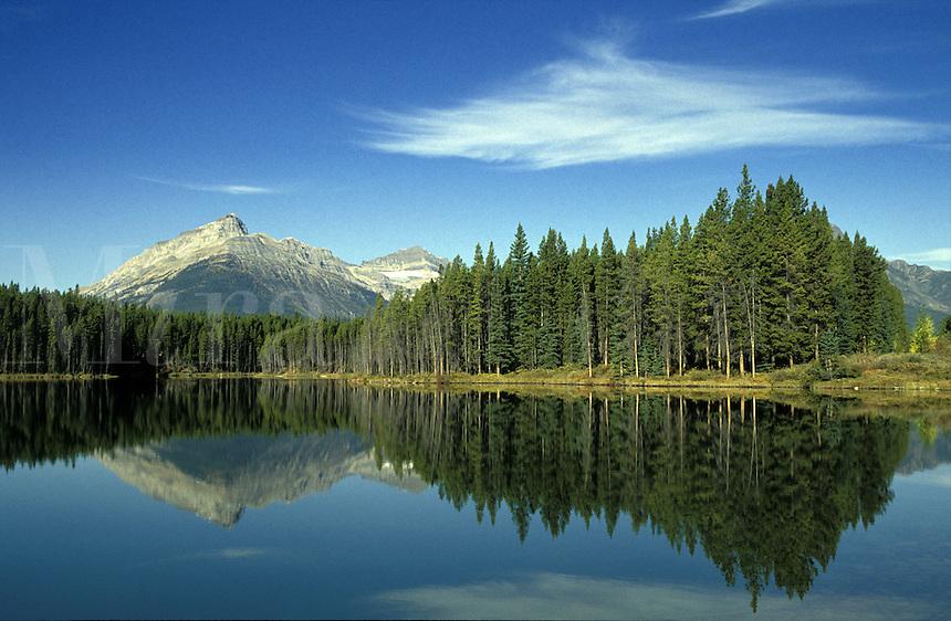 Canada, Alberta, Banff National Park, trees reflected in Herbert Lake