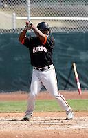 Jose Medina  - San Francisco Giants - 2009 spring training.Photo by:  Bill Mitchell/Four Seam Images