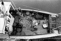 Rye Harbor, New  Hampshire, fisherman Lloyd Hughes unloading native shrimp..Photograph by Peter E. Randall