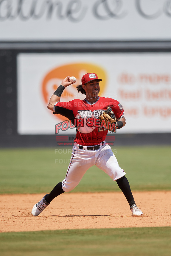 Carolina Mudcats third baseman Eddie Silva (28) throws to first base during a Carolina League game against the Winston-Salem Dash on August 14, 2019 at Five County Stadium in Zebulon, North Carolina.  Winston-Salem defeated Carolina 4-2.  (Mike Janes/Four Seam Images)