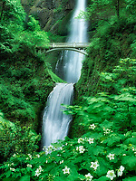 Multnomah Falls in spring. Oregon.
