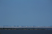 A distant prairie town, miles away, across a lake and a salt flat appears as a mirage.