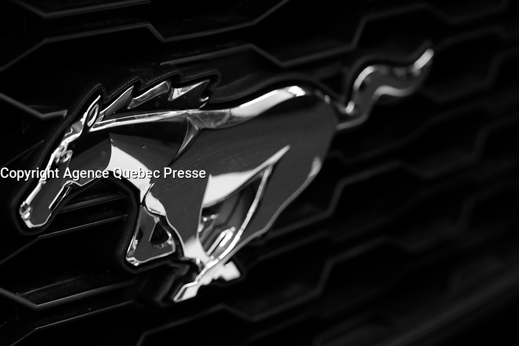 MUSTANG<br /> <br /> 2016 model at Montreal car show. January 15, 2016<br /> <br /> Photo : Pierre Roussel - Agence Quebec Presse<br /> <br /> <br /> <br /> <br /> <br /> <br /> <br /> <br /> <br /> <br /> <br /> .
