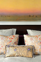 Colorful bed cushions