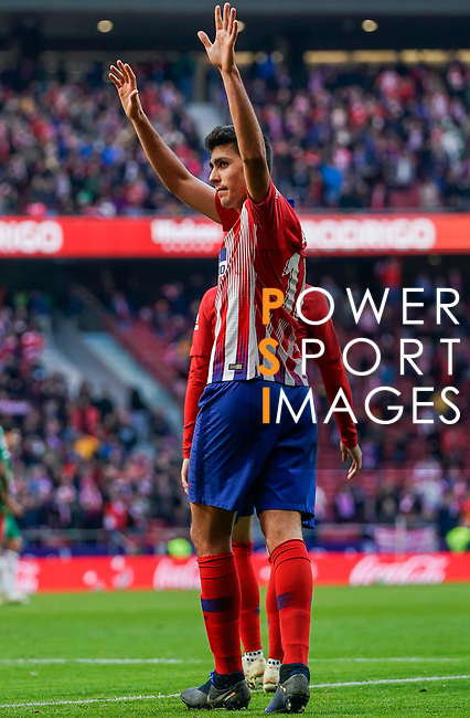 Rodrigo Cascante of Atletico de Madrid celebrates scoring the goal during the La Liga 2018-19 match between Atletico de Madrid and Deportivo Alaves at Wanda Metropolitano on December 08 2018 in Madrid, Spain. Photo by Diego Souto / Power Sport Images