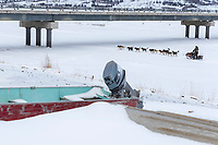 Jeff King runs under the bridge on the Kouwegok slough shortly after leaving the Unalakleet checkpoint on Monday  afternoon March 12th during the 2018 Iditarod Sled Dog Race -- Alaska<br /> <br /> Photo by Jeff Schultz/SchultzPhoto.com  (C) 2018  ALL RIGHTS RESERVED
