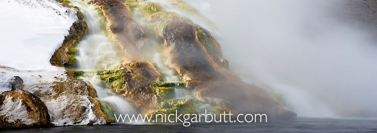 Algae on rocks and hot water from geyser flowing into Firehole River in winter. Yellowstone National Park, Wyoming, USA.