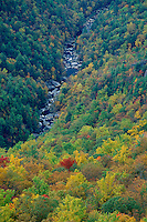 Linville River from Wisemans View<br /> Linville Gorge Wilderness<br /> Pisgah National Forest<br /> North Carolina
