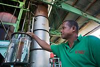 France/DOM/Martinique/ Le François: Distillerie du Simon - Le distillateur controle l'alcoolmètre devant la colonne de distillation