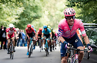 Rigoberto Uran (COL/EF) up the final climb of the day; the Côte de la Roche aux Faucons<br /> <br /> 106th Liège-Bastogne-Liège 2020 (1.UWT)<br /> 1 day race from Liège to Liège (257km)<br /> <br /> ©kramon