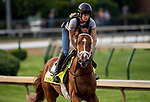 LOUISVILLE, KY - MAY 02: Vino Rosso gallops in preparation for the Kentucky Derby at Churchill Downs on May 2, 2018 in Louisville, Kentucky. (Photo by Alex Evers/Eclipse Sportswire/Getty Images)