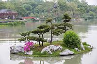 Yangzhou, Jiangsu, China.  Lake in Bonsai Garden, Slender West Lake Park.
