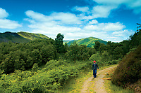 Walking through The Great Trossachs Forest, Glen Finglas Estate, Loch Lomond and the Trossachs National Park, Stirlingshire